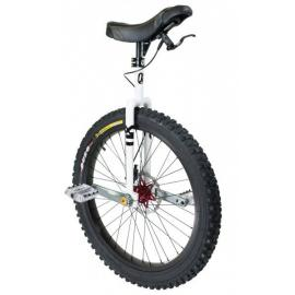 "QX-Q-Axle 24"" Disc, white"